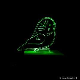 LED lamp Parkiet